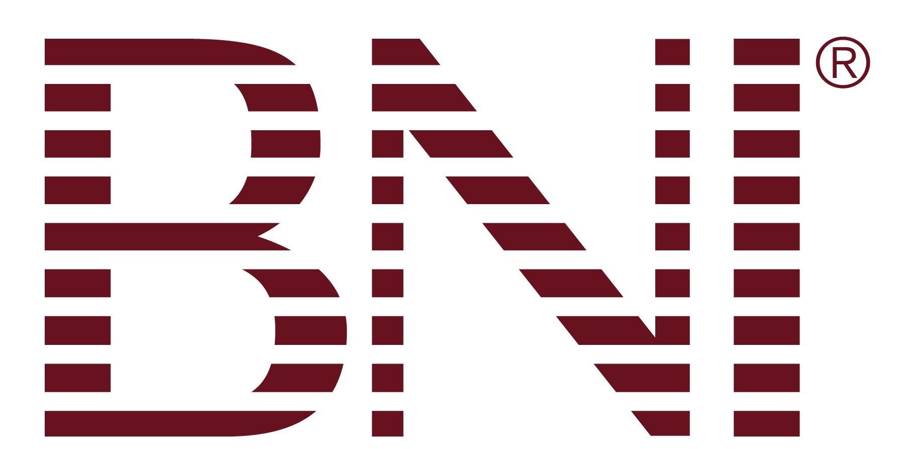 BNI Logo Color Intl Version